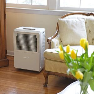 5 Best Dehumidifiers with Pump: Reviews and Buying Guide 2021