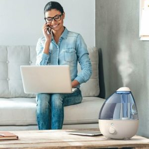 Best Cool Mist Humidifiers (Portable Models for Rooms 2021)